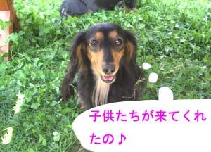 ルンルンちゃん笑顔bのコピー.jpg