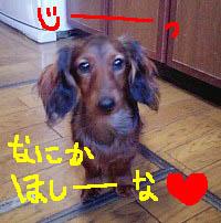 エイト台所うるちゃんB絵.jpg