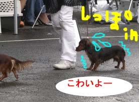 こわいよーのコピー.jpg