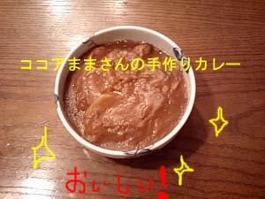 カレーのコピー.jpg