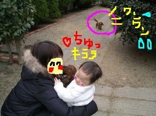 キララと赤ちゃんb.jpg