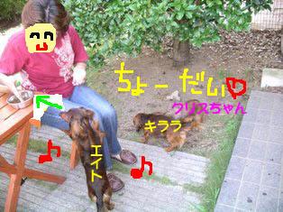 クリままとエイトのコピー.jpg