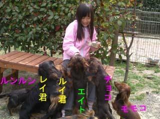 Sちゃんと軍団のコピーBB.jpg