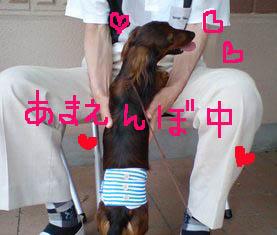 あまえんぼエイト夏B.jpg