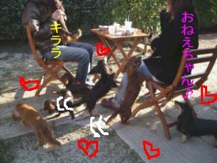 おねえちゃんとbのコピー.jpg