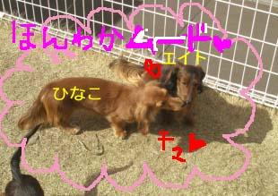 コタロままさんにbのコピー.jpg