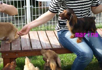 マリナ2のコピー.jpg