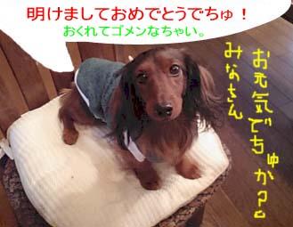 イカリ服着たエイトbEコピー.jpg