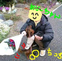 エイトとおじいちゃんb.jpg