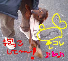 エイトウレしょんb.jpg