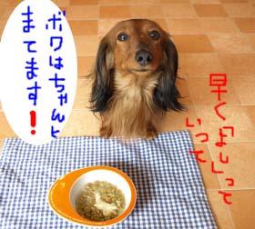 キラおれんじbのコピー.jpg