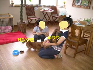 キララとサンタ君Bのコピー.jpg
