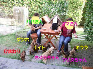 クリクリぱぱまま1のコピー.jpg