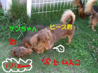 ケンとぱぱBのコピー.jpg