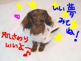 可愛いエイトぱじゃまB絵.jpg