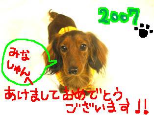 新年エイト2絵.jpg